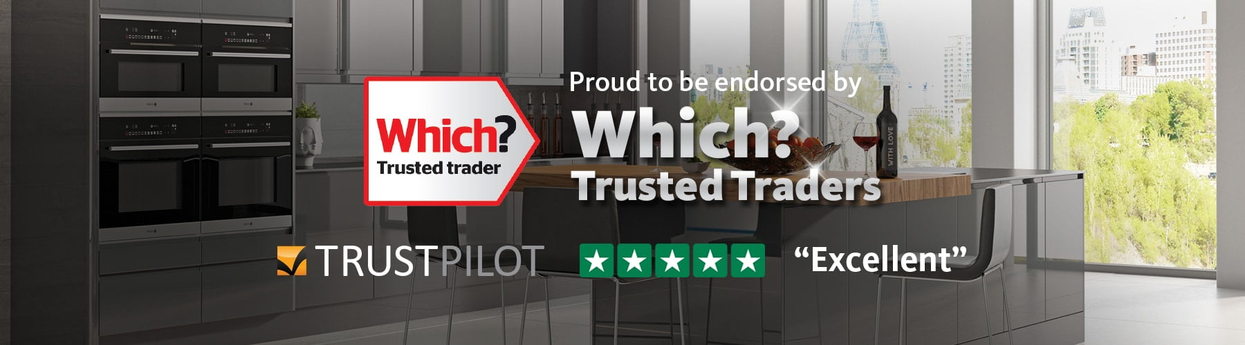 which trust pilot home banner
